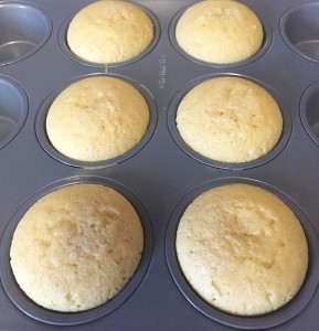 coconut muffins without topping