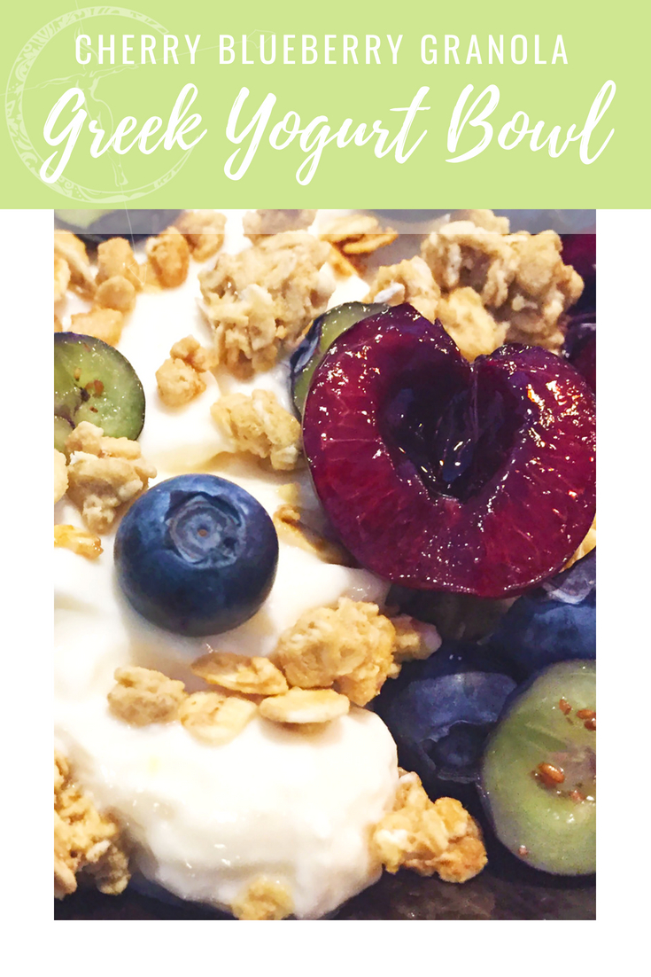 Cherry Blueberry Granola Greek Yogurt bowl from Body Compass Discovery's blog